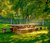 Bench and wooden tables in the garden. Picnic place in forest
